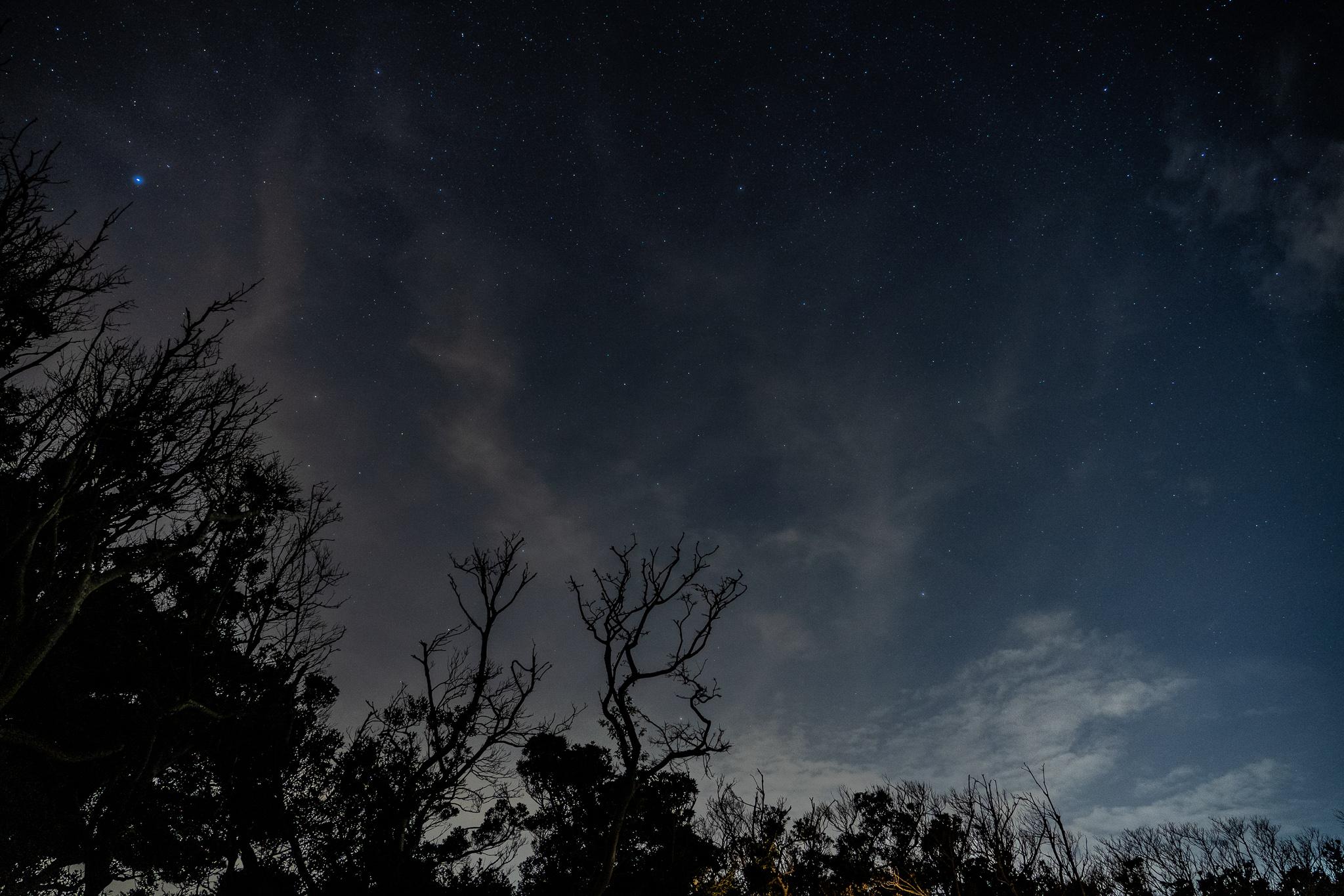 全て詰まった場所(山・海・星空)で、最高の贅沢する@表浜ほうべの森