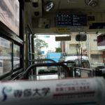 【沖縄旅行③最終】「阿嘉島」でケルマジカを見て、そして遭難した…話